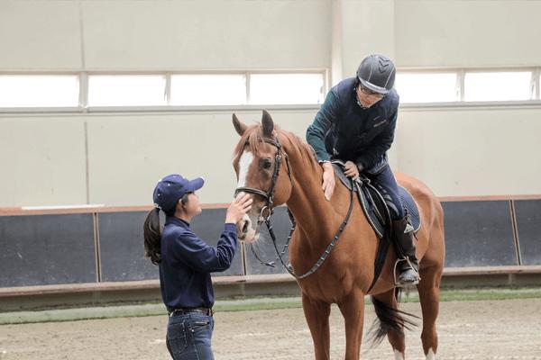 乗馬教室 / 体験乗馬